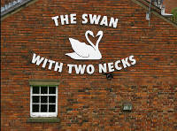 The Swan With Two Necks