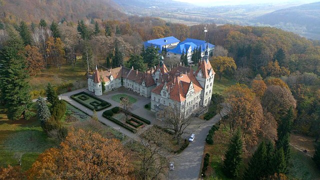 Замок Шенборн (Чинадиево)